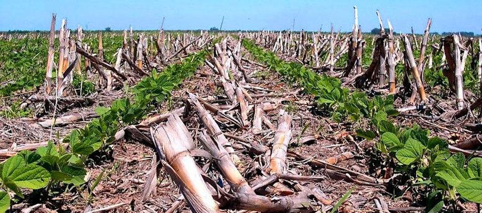Córdoba lanzó un Programa de Buenas Prácticas Agrícolas
