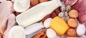 alimentos-carne-leche-huevos-631-corm-280-631-19401
