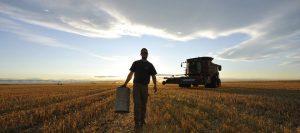 campo productor cosecha
