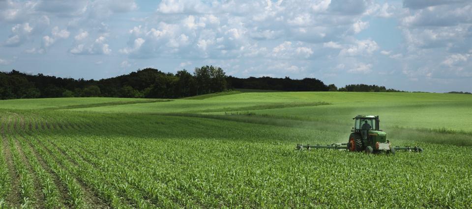 campo-agro