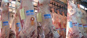 carne-argentina-631-280-631-21887