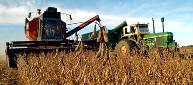 El mercado siente la presión de la mayor cosecha de la historia