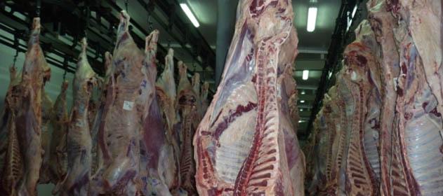 La faena bovina aumentó 4% en julio y volvió a crecer el consumo de carne vacuna