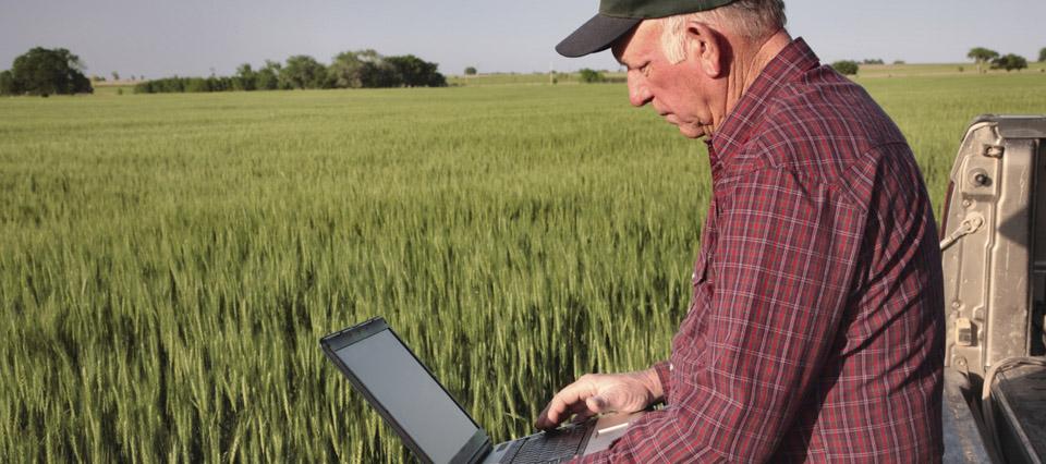 farmer-trigo-verde-960-426-960-20316