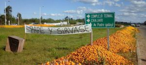 gale-naranjas-protesta-960-8-426-960-19267