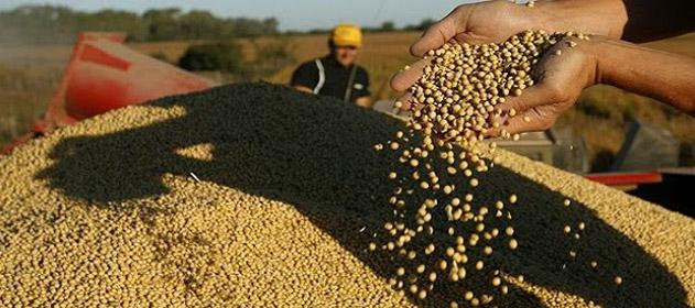 El USDA confirmó un aumento del área de soja de 2,5 millones de hectáreas respecto de 2016
