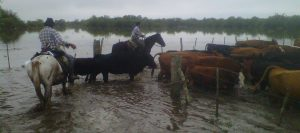 inundaciones-960-426-960-24150