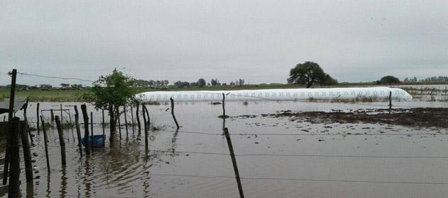 Los productores santafesinos perderán más de 800 millones de dólares por las inundaciones