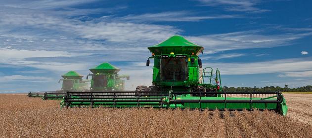 Por mejores rendimientos, la producción de soja sube a 56 millones de toneladas