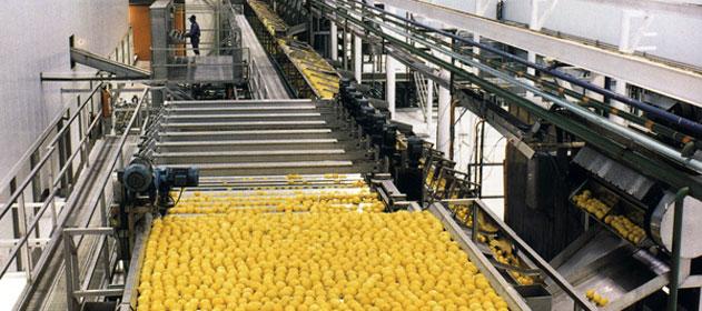 limones-631x280-280-631-7267