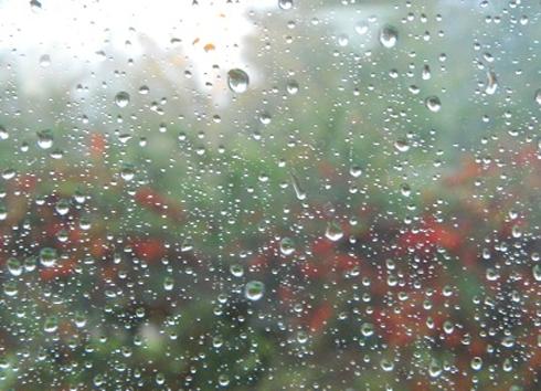 lluvias-490-354-490-24542