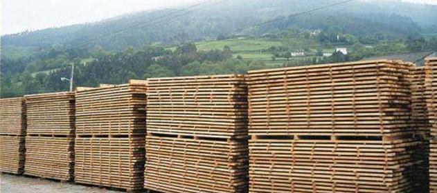 madera-631x280-280-631-2103