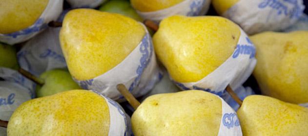 A partir del 2018, Argentina comenzará a importar peras de Corea del Sur