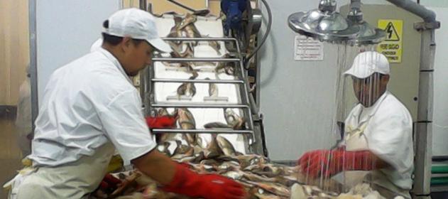 Firman acuerdo para garantizar mayor seguridad de los trabajadores pesqueros