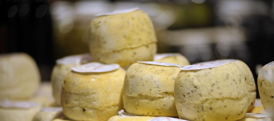 Jujuy busca potenciar la producción de leche y queso de cabra con especialistas europeos