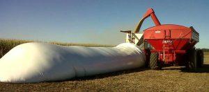 silo-bolsa-maiz-631-280-631-14353