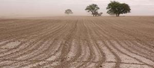 suelo-campo-lluvias-631-280-631-24535