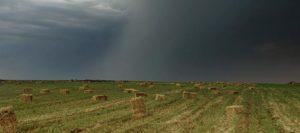 tormenta-campo-631-280-631-26538