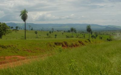 Campo Paraguay