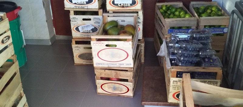 Recomiendan el control biológico para reducir el impacto de la mosca de la fruta