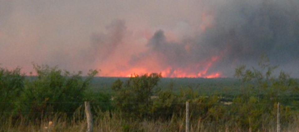 Un informe del INTA revela que hay más de un millón de hectáreas afectadas por el fuego