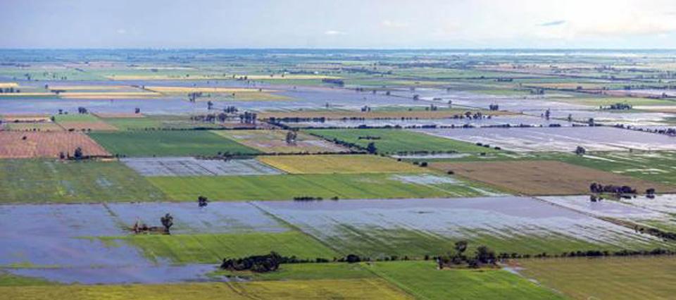 Alerta roja: se acerca un frente de mal tiempo que generará lluvias torrenciales