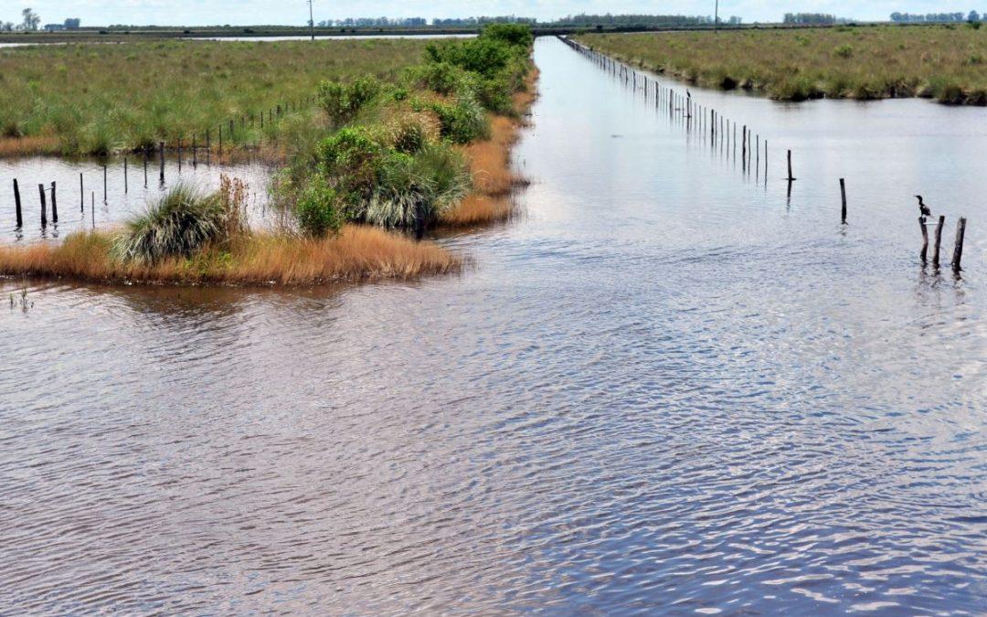Declaran la emergencia agropecuaria en Santa Fe y la prorrogan en Córdoba