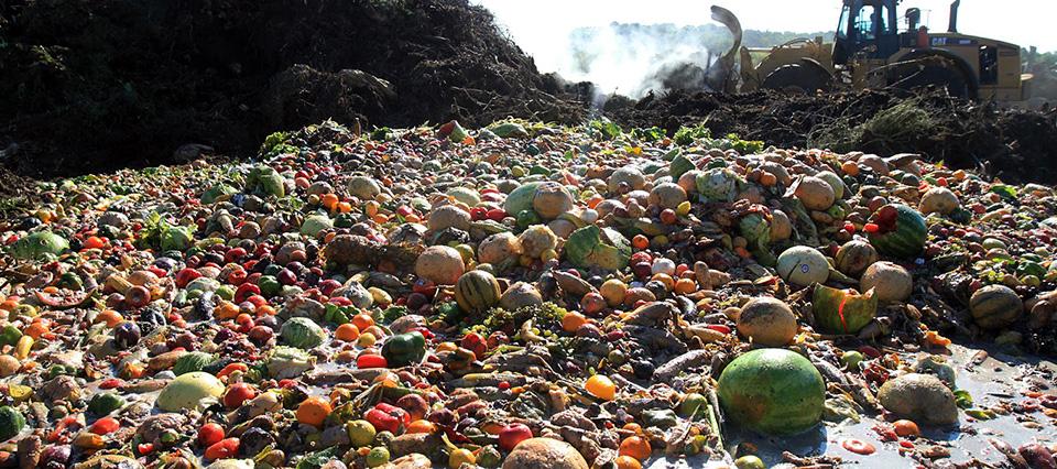 desperdicio-de-alimentos-960