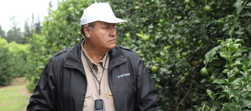 inspectores_empaques_1-960