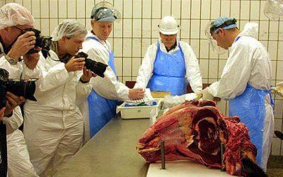 carne-enfermedad