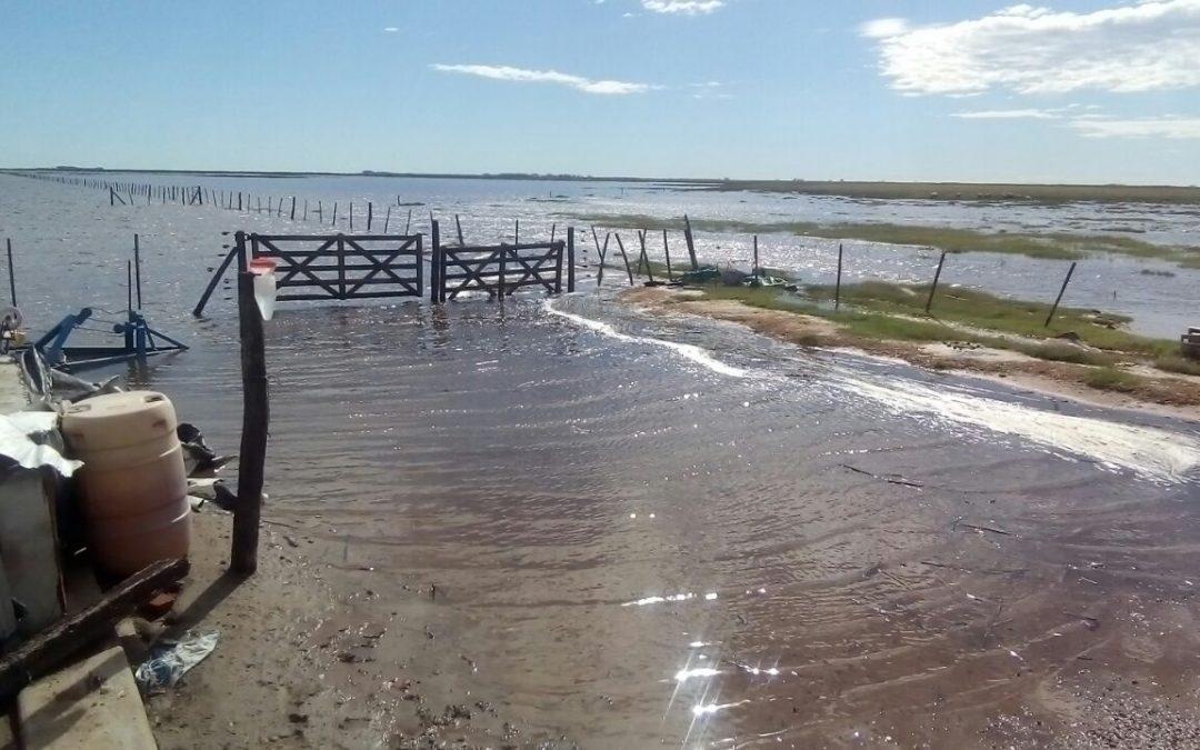 El 37% de los establecimientos agropecuarios sufrieron inundaciones