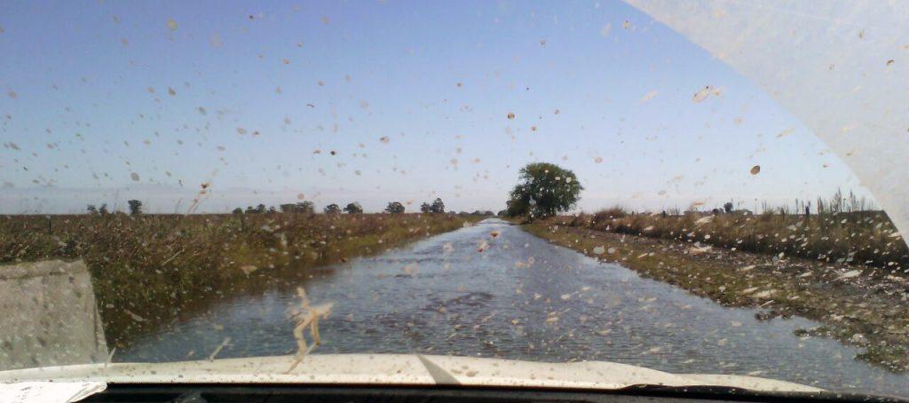 inundaciones rojas ferre ruta