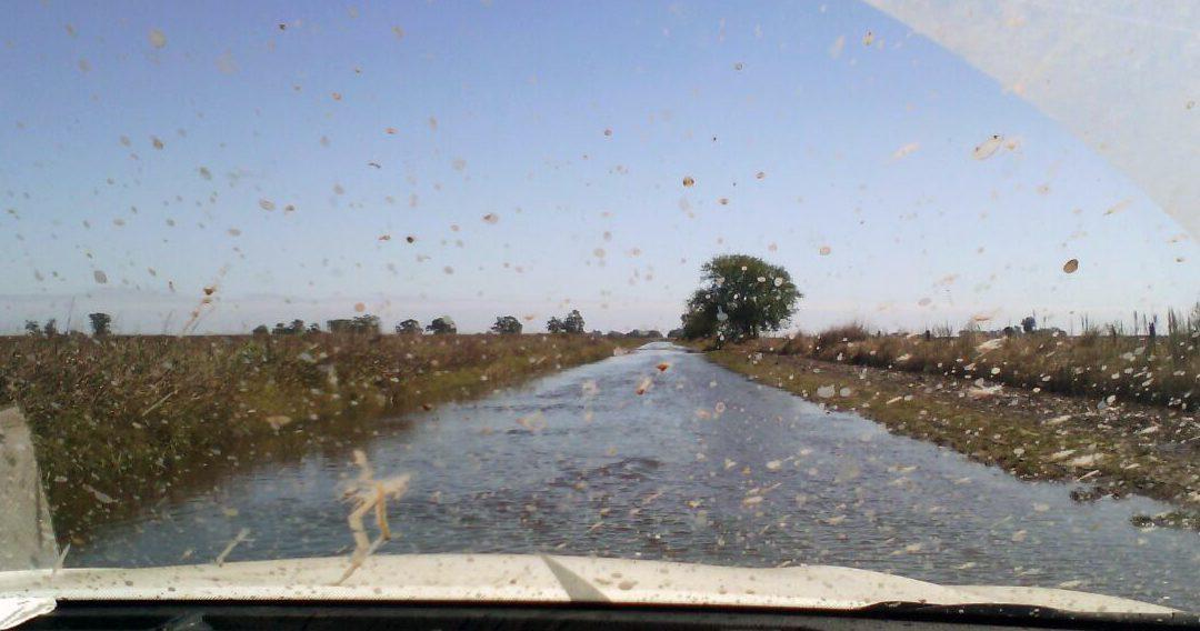 Así están los caminos y las rutas en el noroeste bonaerense tras las excesivas lluvias
