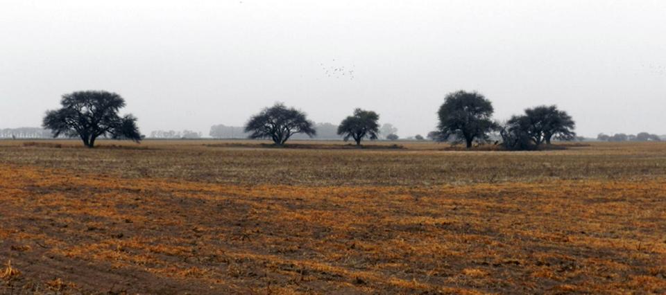 Prevén temperaturas en ascenso y humedad en Córdoba para los primeros días de mayo