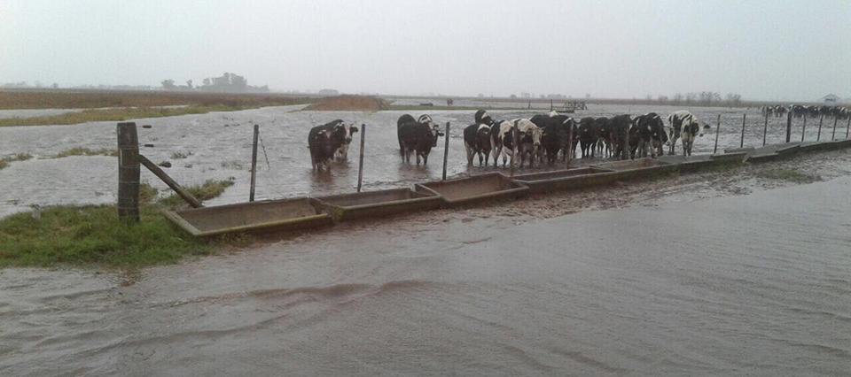 inundaciones junin 960
