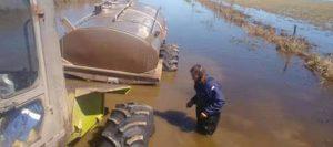 lechero inundado 960