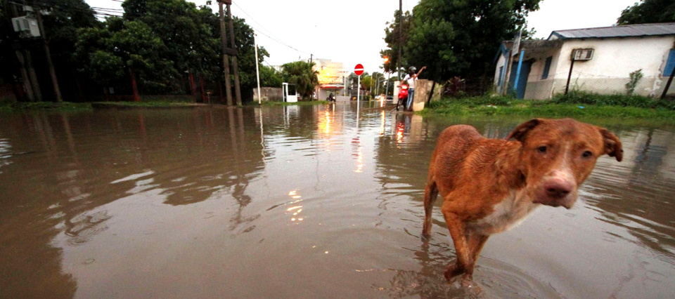 TŽlam 04/01/2016 Corrientes: Esta madrugada la ciudad fue golpeada con un nuevo temporal de intensa lluvia. M‡s de 133 mil'metros cayeron desde que se desat— la tormenta, poco despuŽs de la medianoche, provocando importantes anegamientos. Foto: Germ‡n Pomar