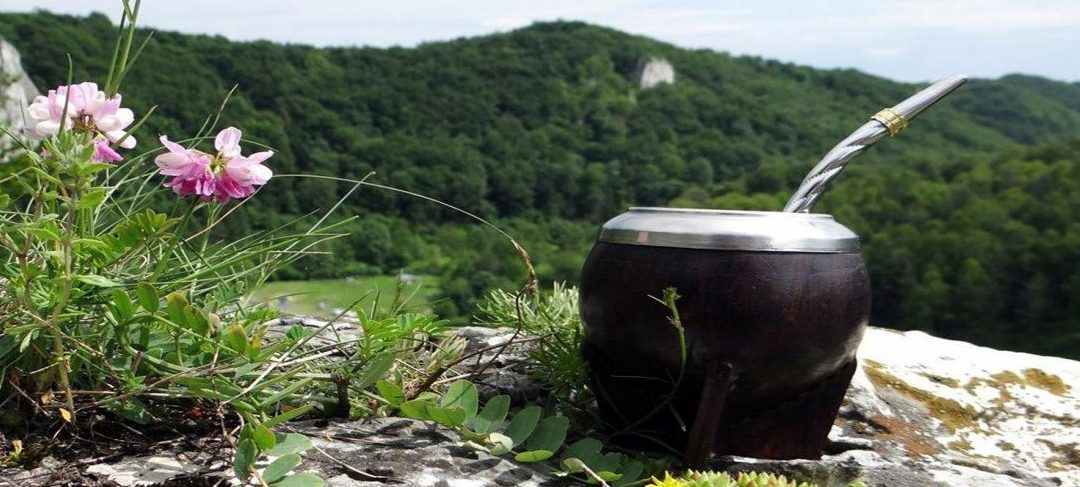 La Ruta de la Yerba Mate podría convertirse en Patrimonio Mundial de Unesco