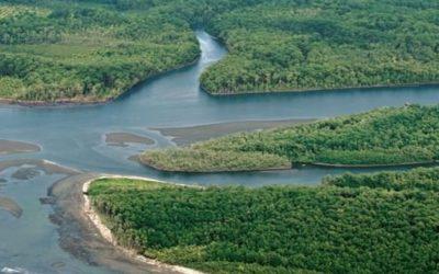 delta entre rios 960