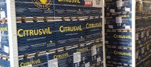 exportacion citricos 960