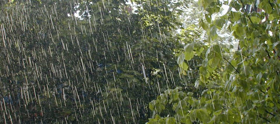 lluvia campo