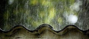 lluvia teja 960