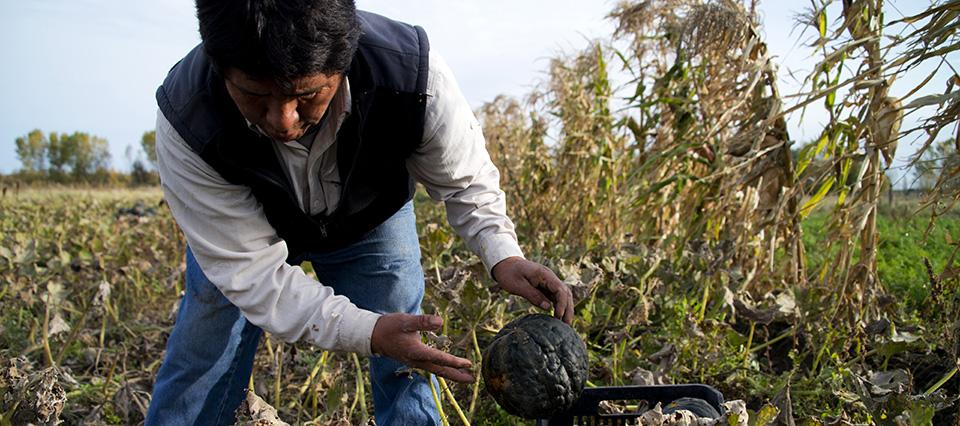 El INDEC prepara para el 2018 el Censo Nacional Agropecuario