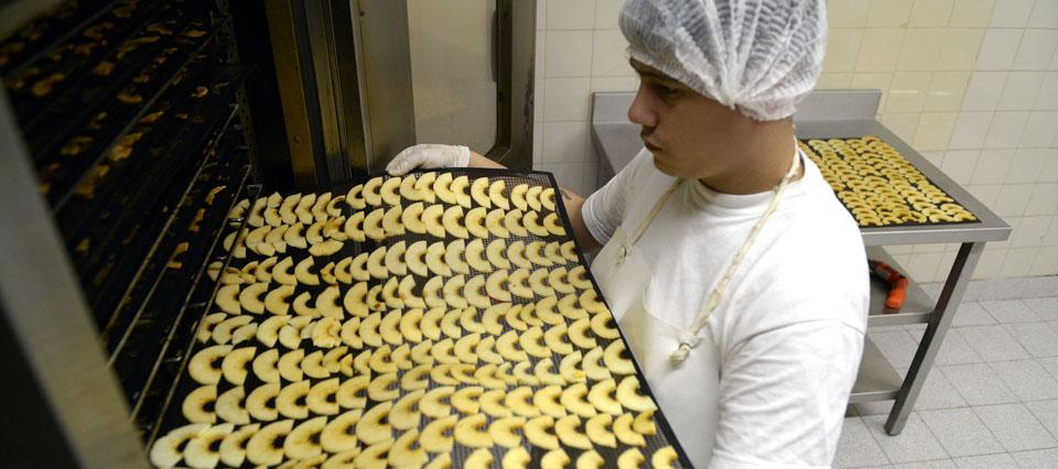 Recomiendan aumentar el intercambio comercial de alimentos con países vecinos