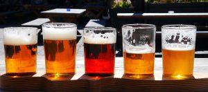 cervezas tipos