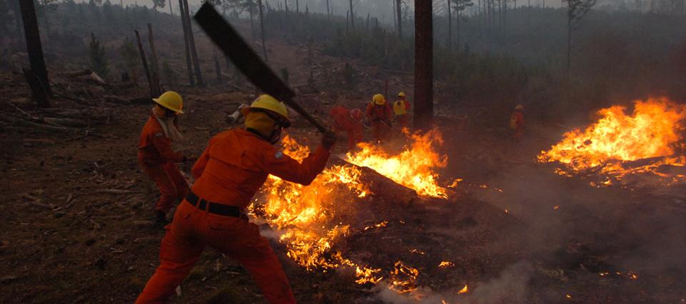 El Ministerio de Seguridad se hará cargo de las tareas de respuesta a incendios forestales