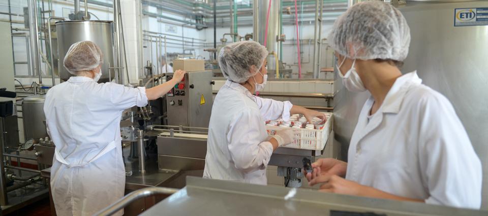 lecheria industria produccion