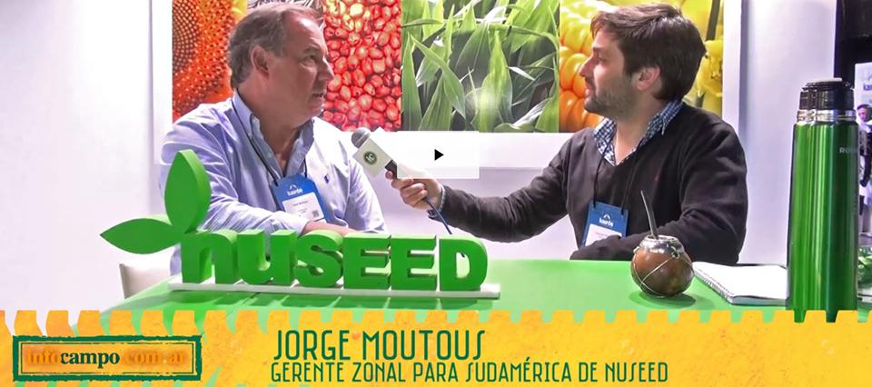 Nuseed sale al mercado con innovación y fuerte apuesta al sorgo y girasol