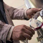vinos vitivinicultura