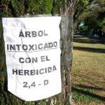 herbicida 2-4d arbol